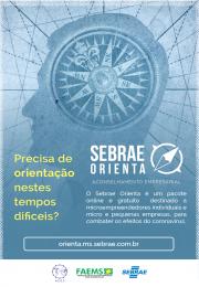 SEBRAE ORIENTA